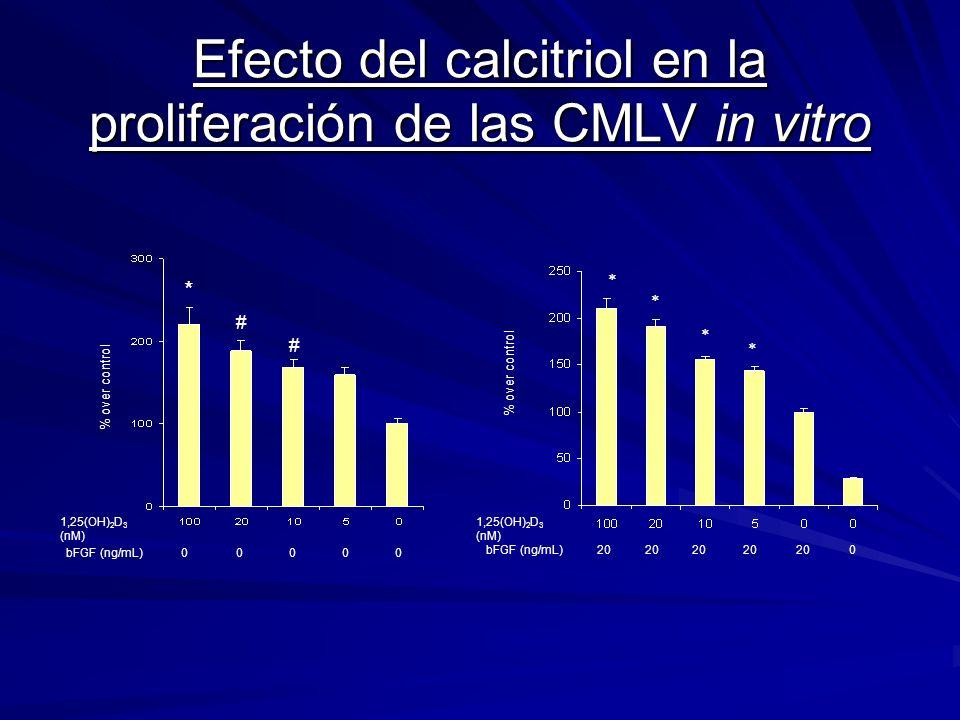 Efecto del calcitriol en la proliferación de las CMLV in vitro * # # % over control 1,25(OH) 2 D 3 (nM) bFGF (ng/mL)00000 20 0