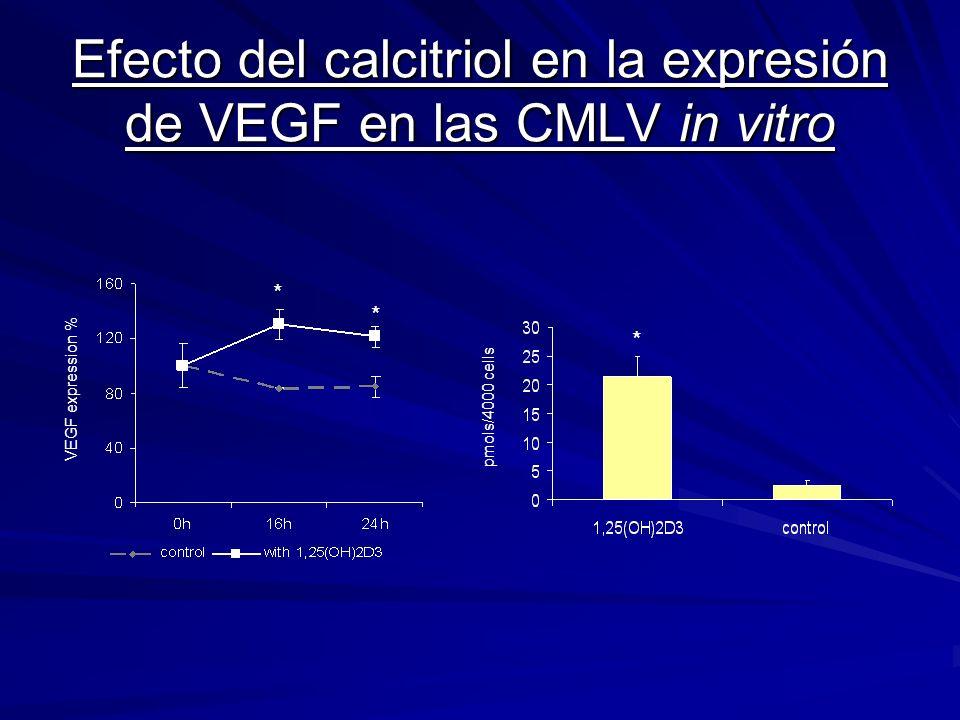 Efecto del calcitriol en la expresión de VEGF en las CMLV in vitro VEGF expression % * * pmols/4000 cells *