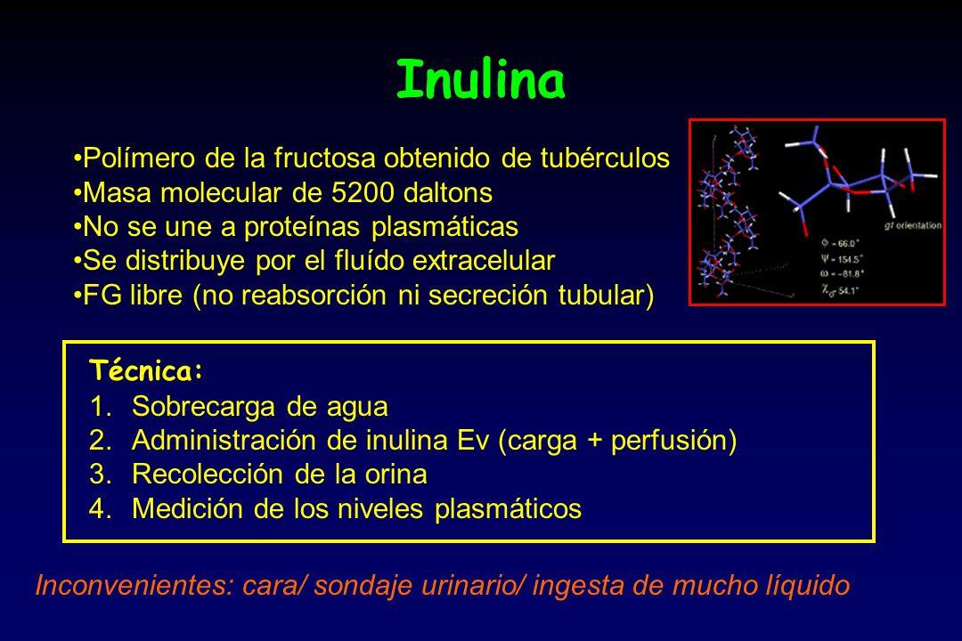 Inulina Polímero de la fructosa obtenido de tubérculos Masa molecular de 5200 daltons No se une a proteínas plasmáticas Se distribuye por el fluído ex