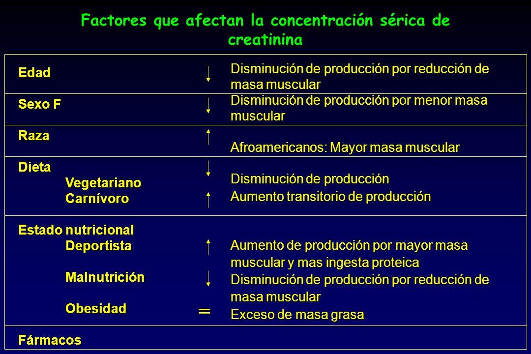 Factores que afectan la concentración sérica de creatinina Edad Sexo F RazaDietaVegetarianoCarnívoro Estado nutricional DeportistaMalnutriciónObesidad