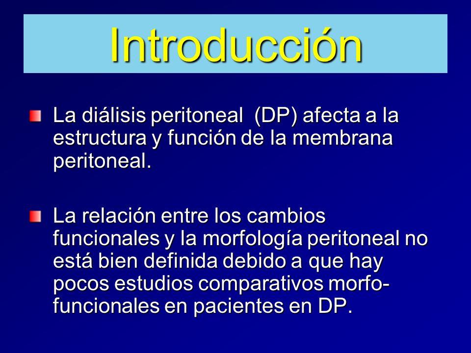 Introducción La diálisis peritoneal (DP) afecta a la estructura y función de la membrana peritoneal. La relación entre los cambios funcionales y la mo
