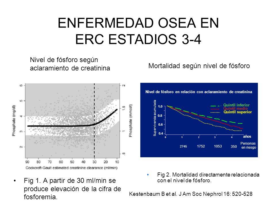 ENFERMEDAD OSEA EN ERC ESTADIOS 3-4 Fig 1. A partir de 30 ml/min se produce elevación de la cifra de fosforemia. Kestenbaum B et al. J Am Soc Nephrol
