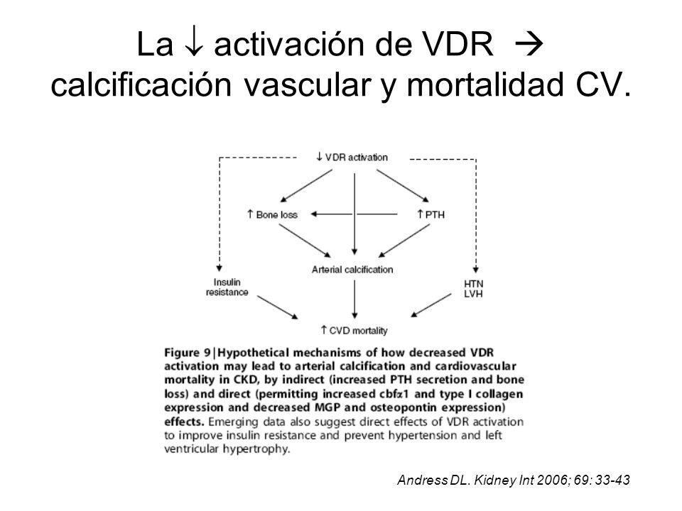 La activación de VDR calcificación vascular y mortalidad CV. Andress DL. Kidney Int 2006; 69: 33-43