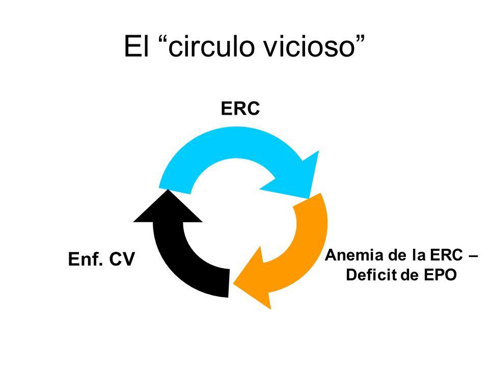El circulo vicioso ERC Anemia de la ERC – Deficit de EPO Enf. CV
