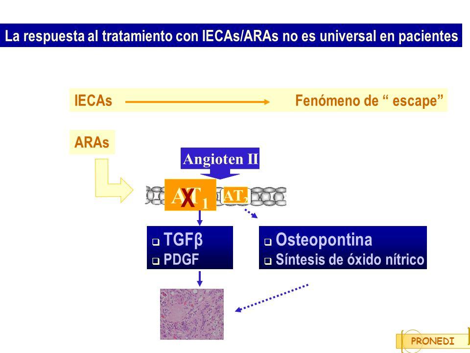 La respuesta al tratamiento con IECAs/ARAs no es universal en pacientes IECAs Fenómeno de escape TGFβ PDGF Angioten II AT 1 AT 2 Osteopontina Síntesis