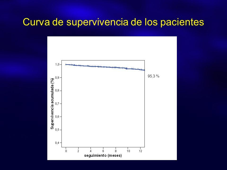 Curva de supervivencia de los pacientes 95,3 %