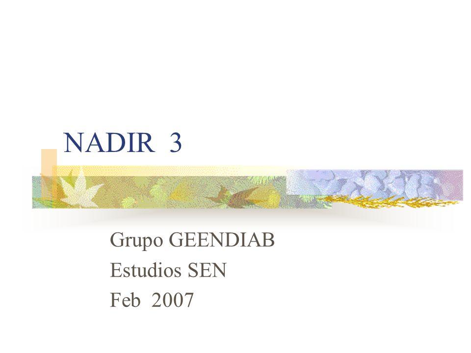 NADIR 3 Grupo GEENDIAB Estudios SEN Feb 2007