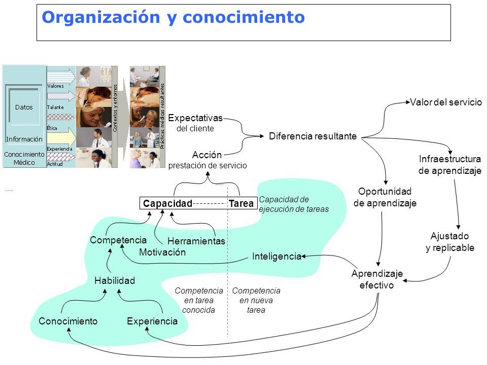 Organización y conocimiento ConocimientoExperiencia Habilidad Competencia Motivación Herramientas CapacidadTarea Capacidad de ejecución de tareas Acci