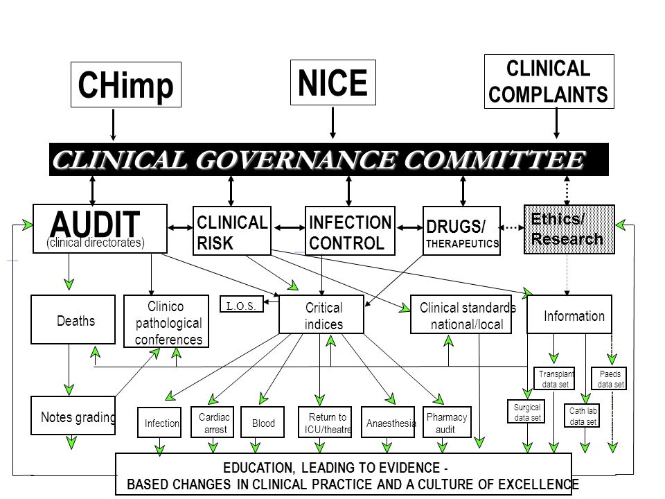 CLINICAL GOVERNANCE COMMITTEE L.O.S.