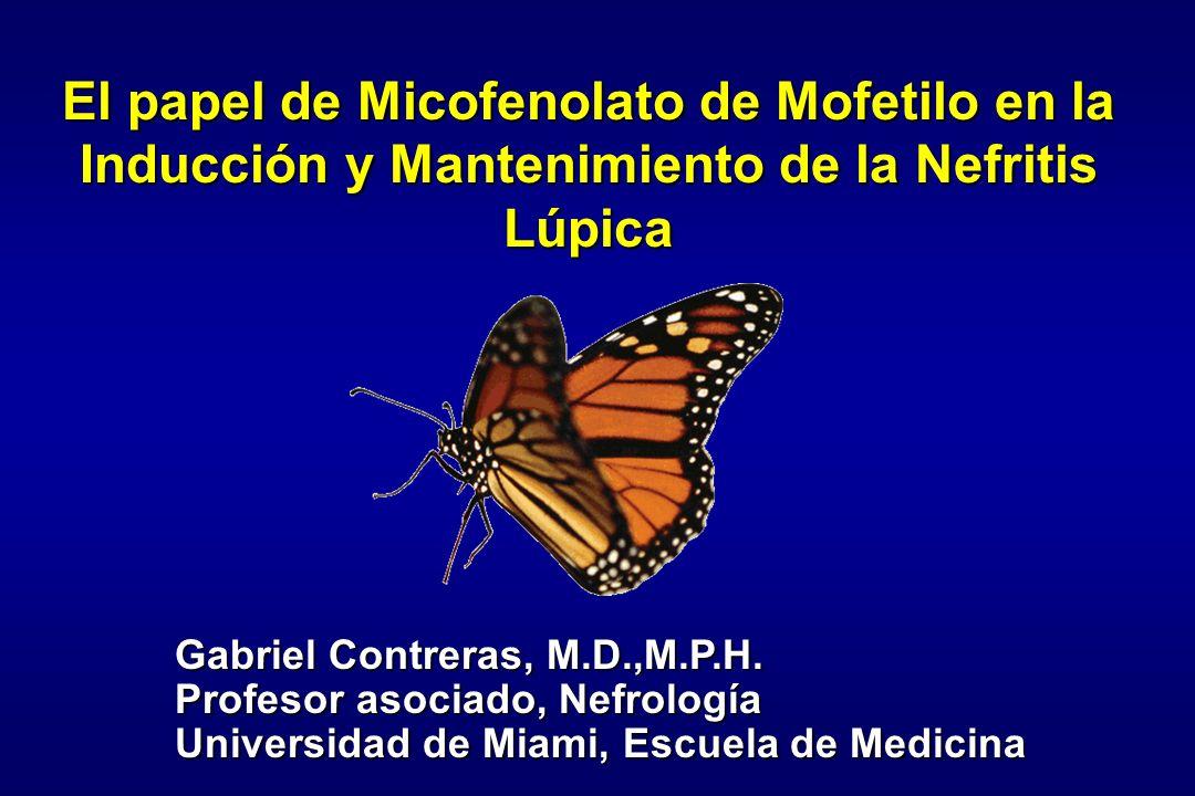 El papel de Micofenolato de Mofetilo en la Inducción y Mantenimiento de la Nefritis Lúpica Gabriel Contreras, M.D.,M.P.H. Profesor asociado, Nefrologí
