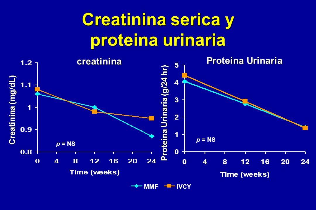 Creatinina serica y proteina urinaria creatinina Proteina Urinaria MMFIVCY Creatinina (mg/dL) Proteina Urinaria (g/24 hr) p = NS