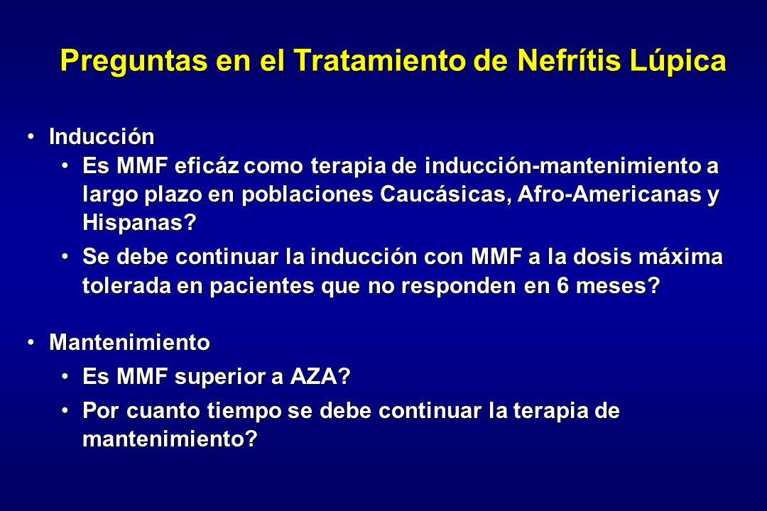 InducciónInducción Es MMF eficáz como terapia de inducción-mantenimiento a largo plazo en poblaciones Caucásicas, Afro-Americanas y Hispanas?Es MMF ef