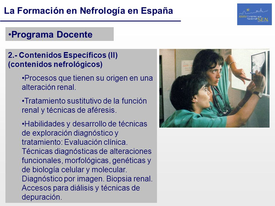 La Formación en Nefrología en España Programa Docente 2.- Contenidos Específicos (II) (contenidos nefrológicos) Procesos que tienen su origen en una a