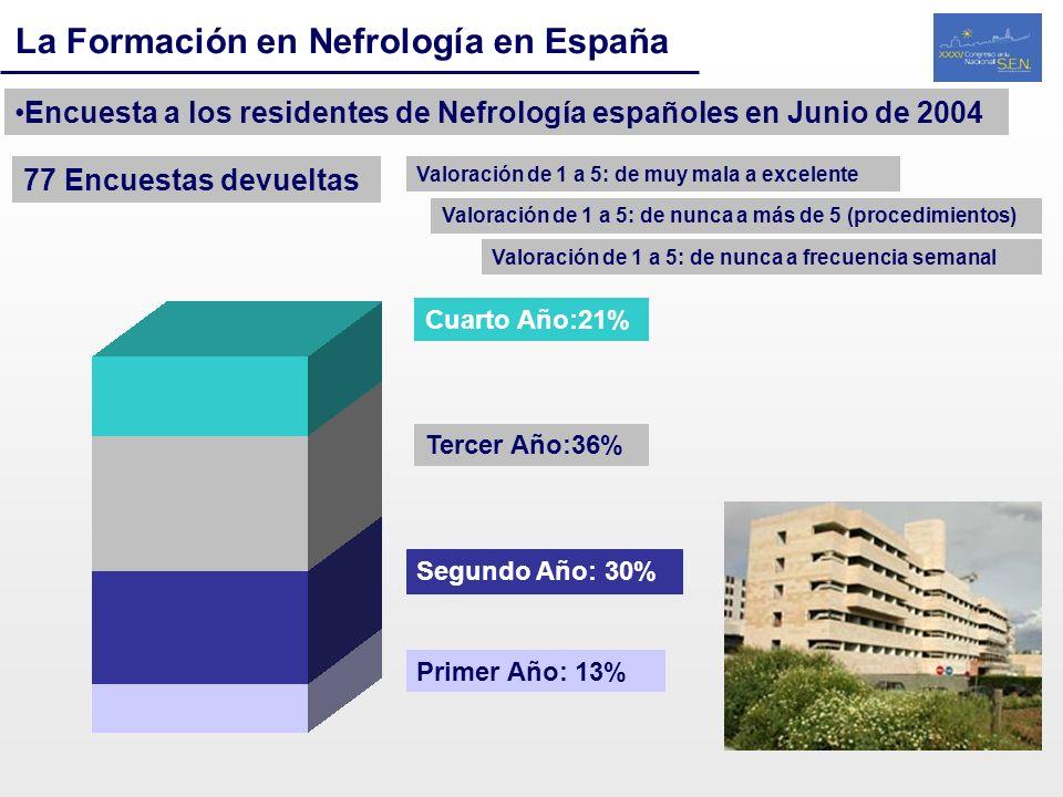 La Formación en Nefrología en España Encuesta a los residentes de Nefrología españoles en Junio de 2004 77 Encuestas devueltas Primer Año: 13% Segundo
