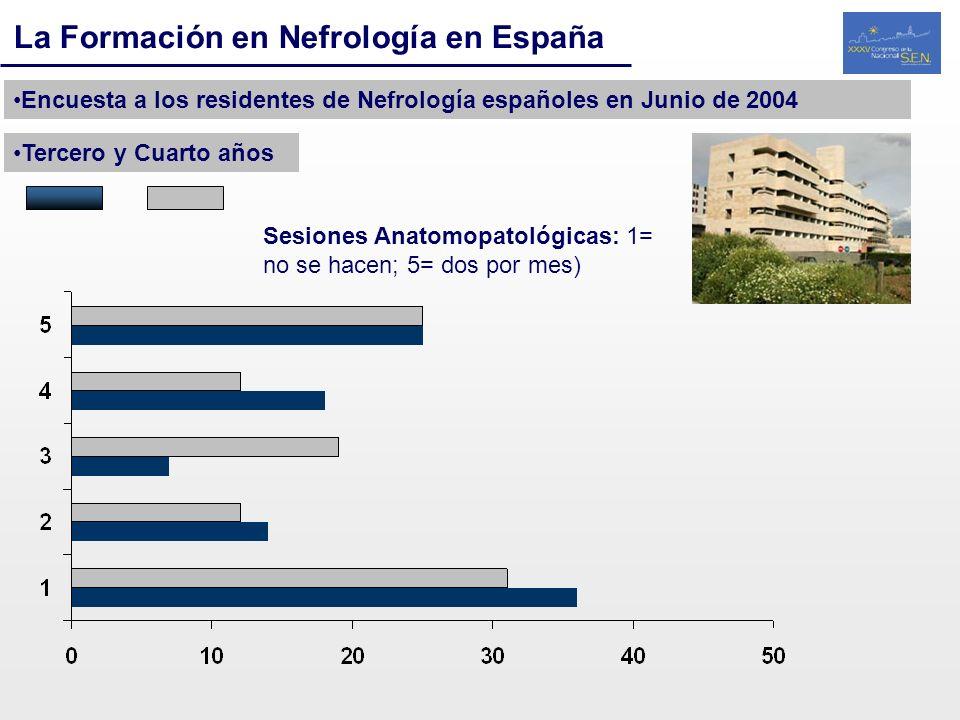 La Formación en Nefrología en España Encuesta a los residentes de Nefrología españoles en Junio de 2004 Tercero y Cuarto años Sesiones Anatomopatológi