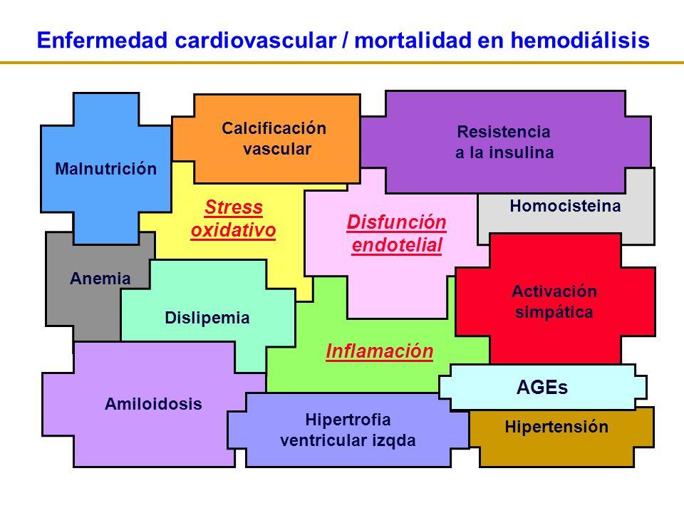 Inflamación Stress oxidativo Disfunción endotelial Calcificación vascular Anemia Dislipemia Amiloidosis Homocisteina Resistencia a la insulina Malnutrición Activación simpática Hipertensión Enfermedad cardiovascular / mortalidad en hemodiálisis Hipertrofia ventricular izqda AGEs