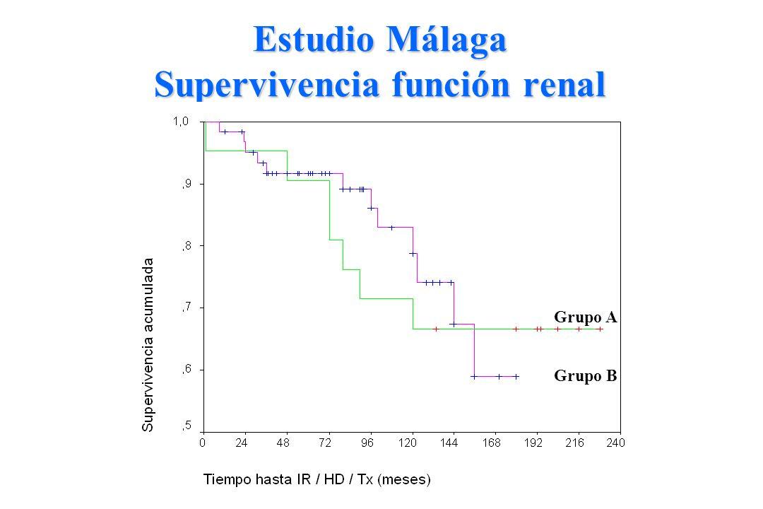 Estudio Málaga Supervivencia función renal Grupo B Grupo A