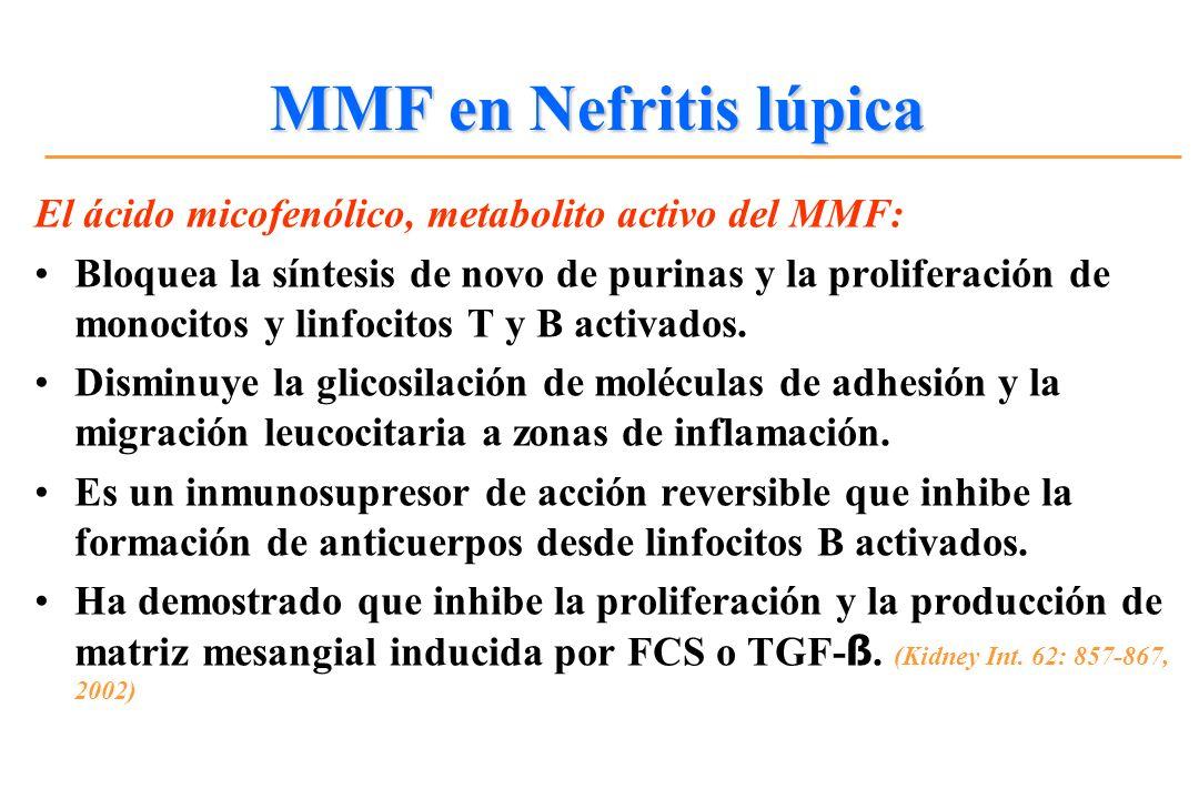El ácido micofenólico, metabolito activo del MMF: Bloquea la síntesis de novo de purinas y la proliferación de monocitos y linfocitos T y B activados.