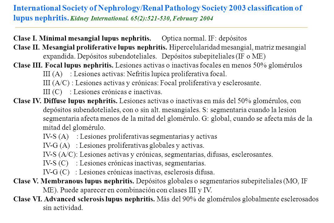 International Society of Nephrology/Renal Pathology Society 2003 classification of lupus nephritis. Kidney International. 65(2):521-530, February 2004