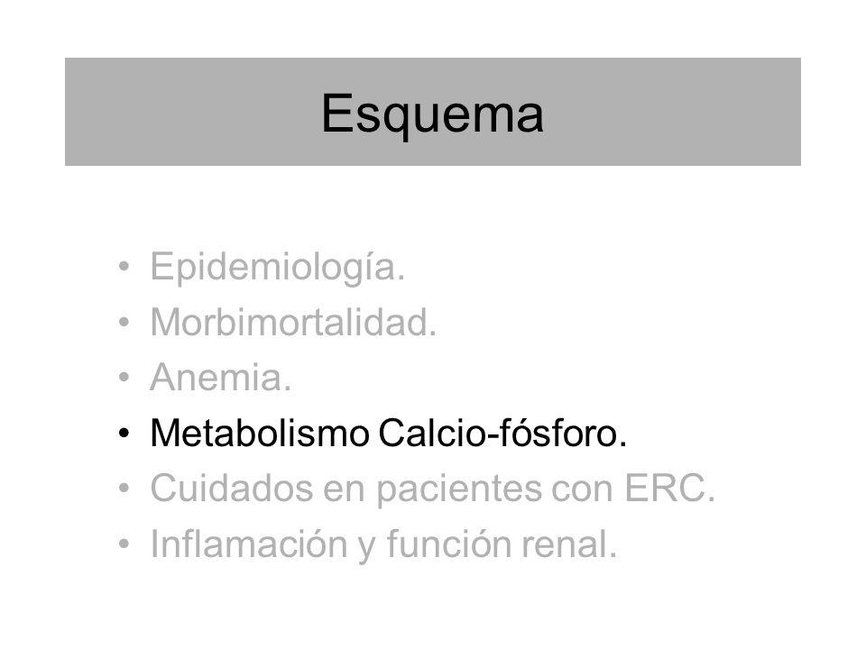 Esquema Epidemiología. Morbimortalidad. Anemia. Metabolismo Calcio-fósforo. Cuidados en pacientes con ERC. Inflamación y función renal.