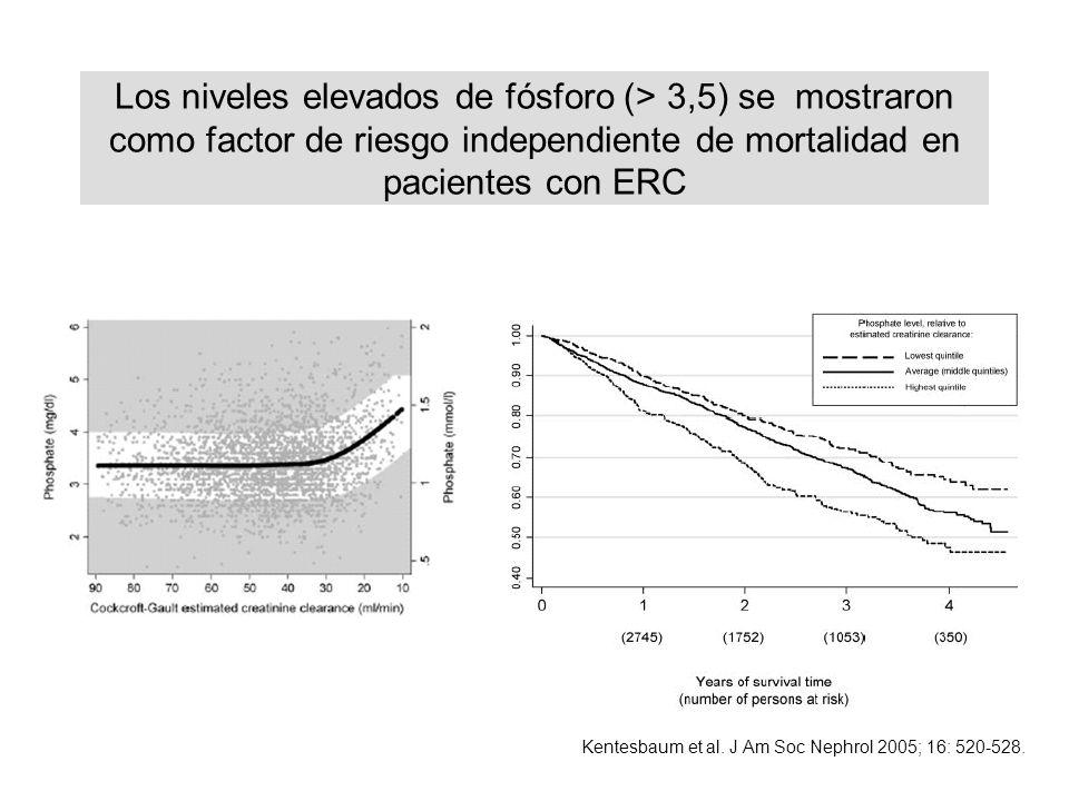 Los niveles elevados de fósforo (> 3,5) se mostraron como factor de riesgo independiente de mortalidad en pacientes con ERC Kentesbaum et al. J Am Soc