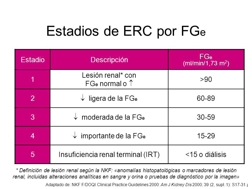 La anemia fue factor de riesgo CV en DM con ERC y no en DM sin ERC Vlagopoulos et al.