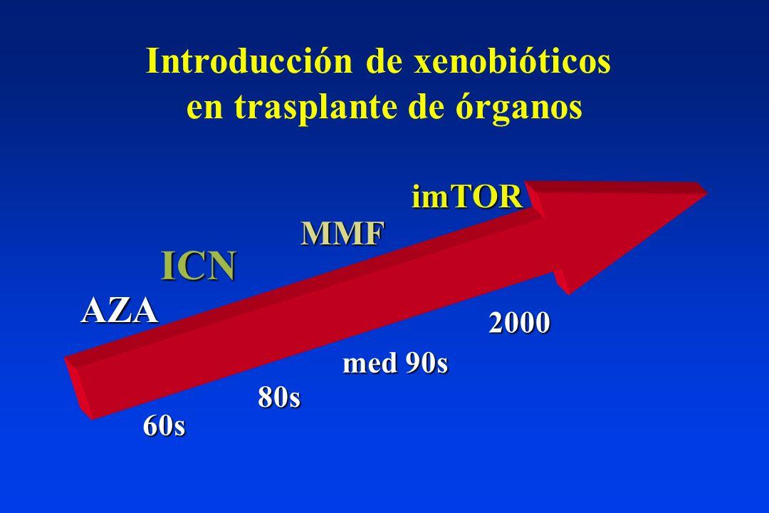ICN imTOR MPA Acm anti-IL2R Ac policlonales Jak3i ? LEA FK778