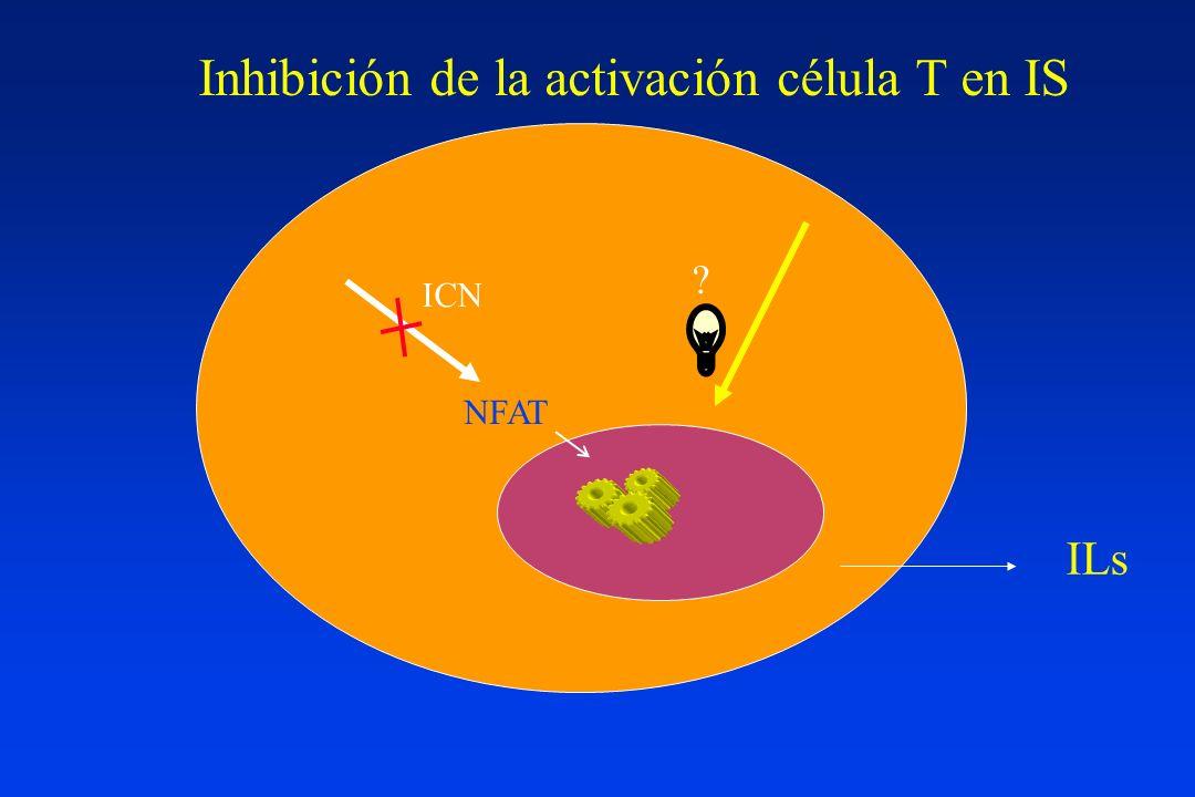 ICN en trasplante renal Serendipity El azar y la necesidad (Monod) Identificar grandes éxitos detrás de pequeños fracasos