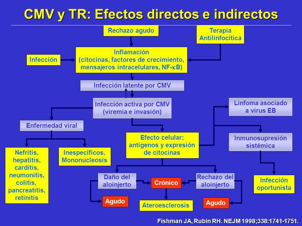 Infección Rechazo agudoTerapia Antilinfocítica Inflamación (citocinas, factores de crecimiento, mensajeros intracelulares, NF- B) Infección latente po