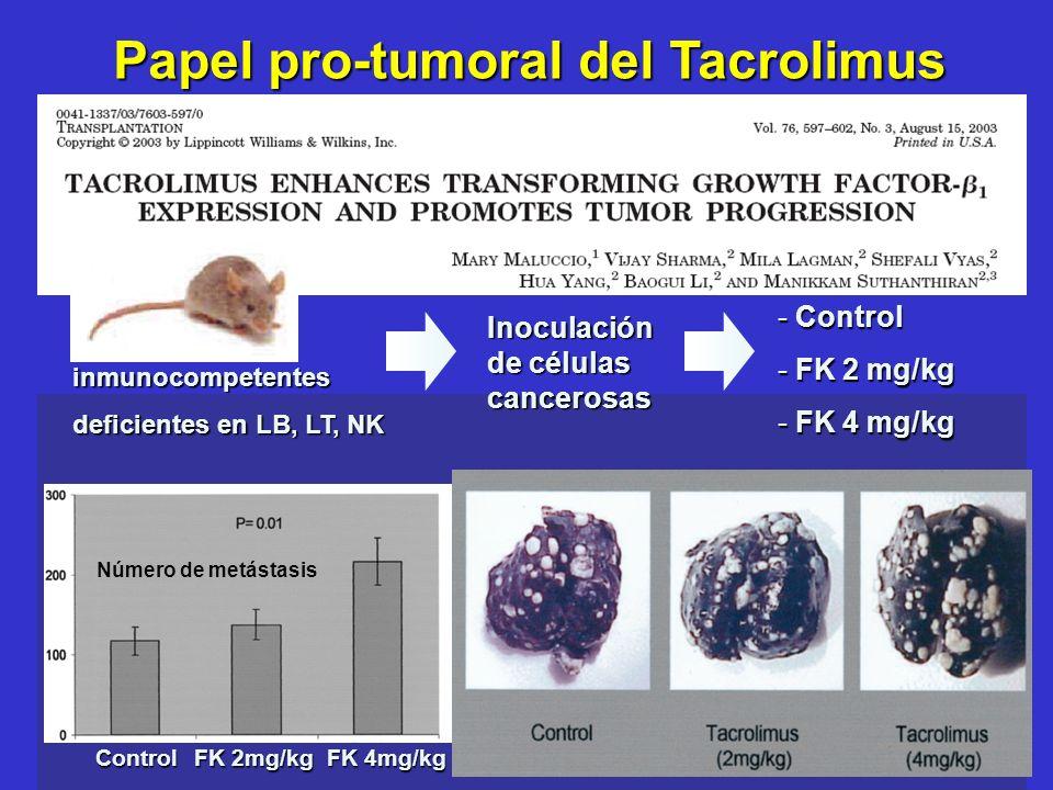Número de metástasis Control FK 2mg/kg FK 4mg/kg Papel pro-tumoral del Tacrolimus - Control - FK 2 mg/kg - FK 4 mg/kg Inoculación de células cancerosa