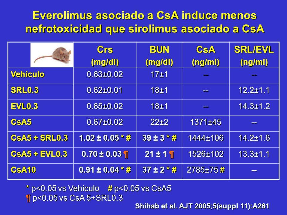 Everolimus asociado a CsA induce menos nefrotoxicidad que sirolimus asociado a CsA Shihab et al. AJT 2005;5(suppl 11):A261 Crs(mg/dl)BUN(mg/dl)CsA(ng/