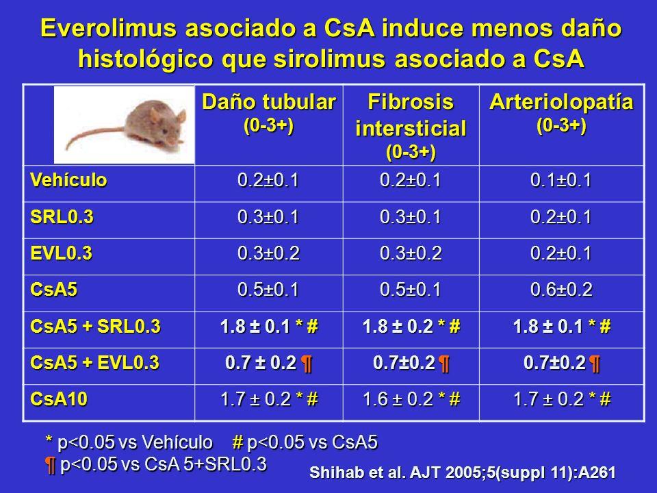 Shihab et al. AJT 2005;5(suppl 11):A261 Daño tubular (0-3+) Fibrosis intersticial (0-3+) Arteriolopatía (0-3+) Vehículo 0.2±0.1 0.1±0.1 SRL0.3 0.3±0.1