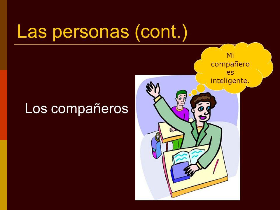 Las personas (cont.) El profesor