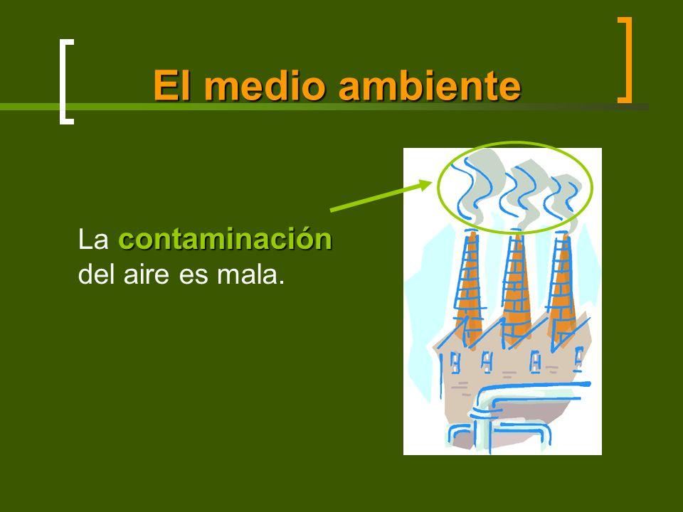 El medio ambiente contaminación La contaminación del aire es mala.