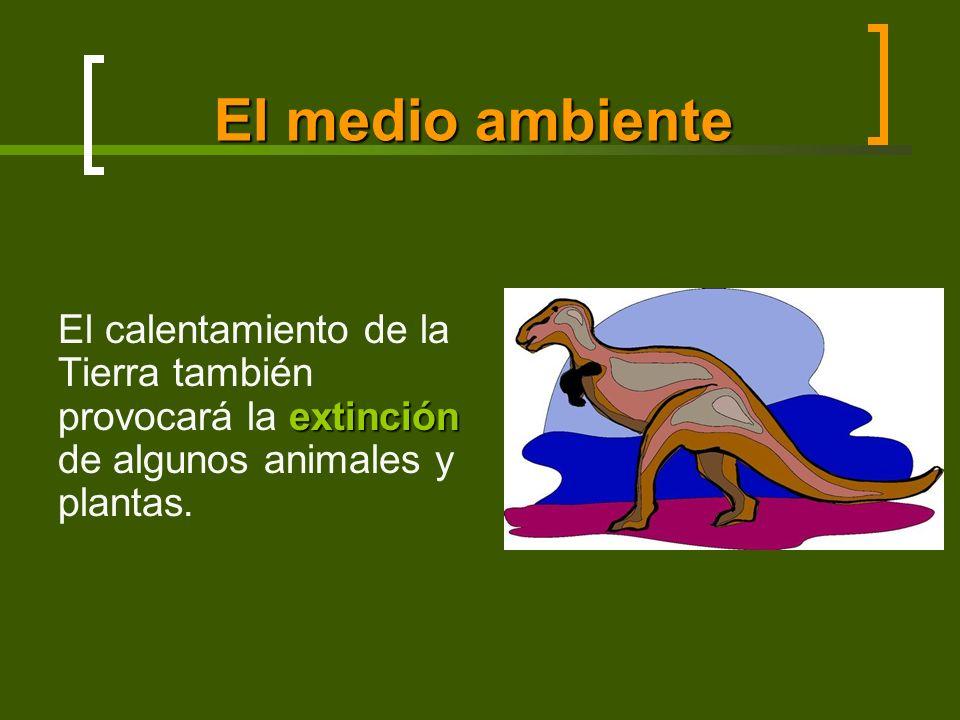 El medio ambiente extinción El calentamiento de la Tierra también provocará la extinción de algunos animales y plantas.