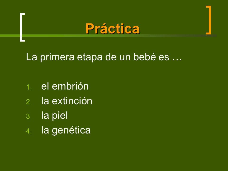 Práctica La primera etapa de un bebé es … 1. el embrión 2. la extinción 3. la piel 4. la genética