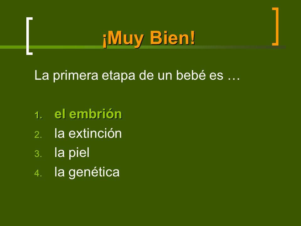 ¡Muy Bien! La primera etapa de un bebé es … 1. el embrión 2. la extinción 3. la piel 4. la genética