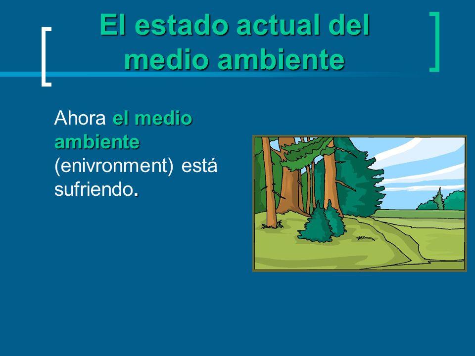 El estado actual del medio ambiente el medio ambiente. Ahora el medio ambiente (enivronment) está sufriendo.