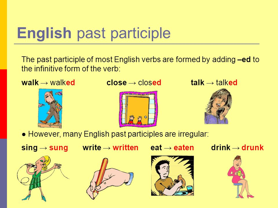 The past participle of most English verbs are formed by adding –ed to the infinitive form of the verb: walk walked close closed talk talked However, m