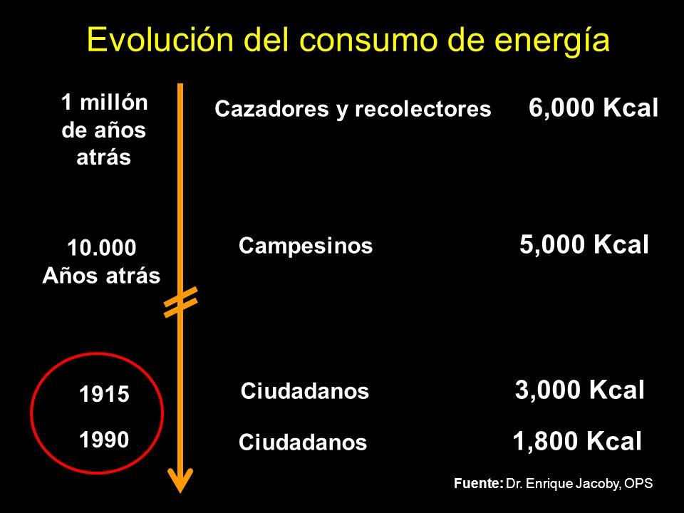Cazadores y recolectores 6,000 Kcal Campesinos 5,000 Kcal Ciudadanos 3,000 Kcal Ciudadanos 1,800 Kcal 1 millón de años atrás 10.000 Años atrás 1915 19
