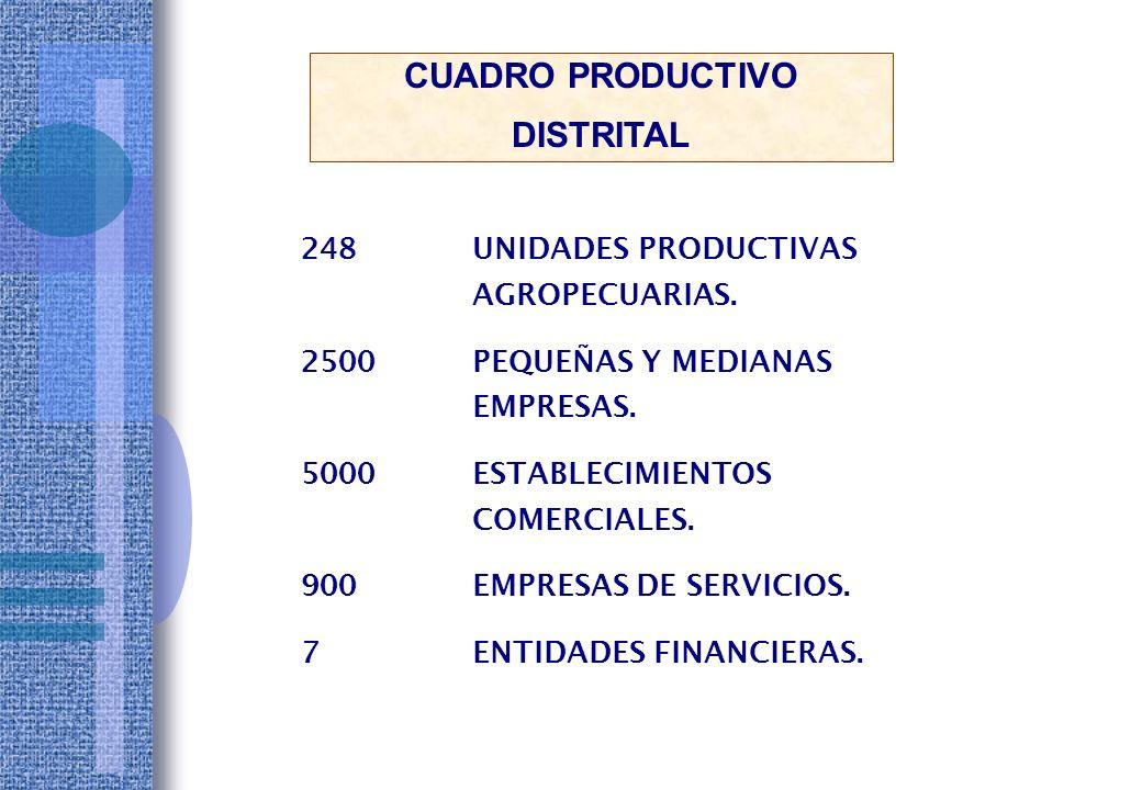 INSTITUTOS SUPERIORES:4 ESTUDIANTES UNIVERSITARIOS :15,000 CENTROS DE SALUD :9 CASAS DE LA JUVENTUD :3 ORGANIZACIONES SOCIALES :800 ORGANIZACIONES CENTRALES :8 CLUBES DEPORTIVOS : 500 PARQUES ZONALES CENTRALES :3 PARQUES COMUNALES: 150 RESULTADOS CONCRETOS DEL PLAN DE DESARROLLO INTEGRAL DE VILLA EL SALVADOR