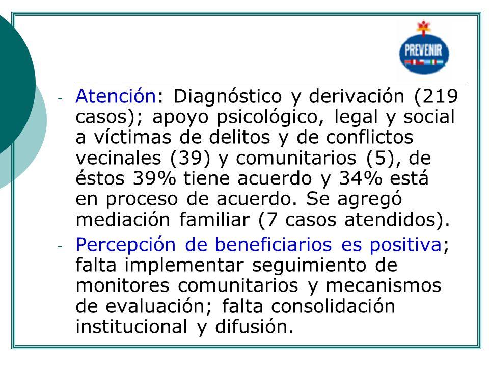 - Atención: Diagnóstico y derivación (219 casos); apoyo psicológico, legal y social a víctimas de delitos y de conflictos vecinales (39) y comunitario