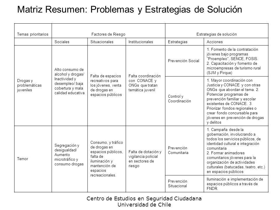 Centro de Estudios en Seguridad Ciudadana Universidad de Chile Matriz Resumen: Problemas y Estrategias de Solución Temas prioritariosFactores de Riesg