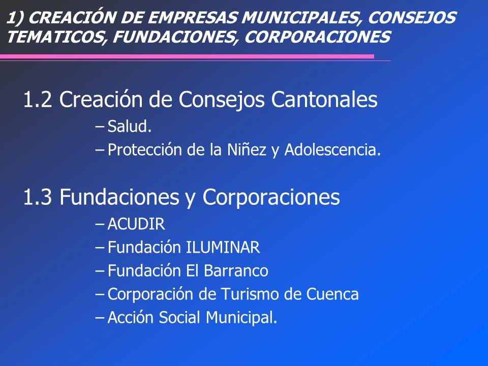 1) CREACIÓN DE EMPRESAS MUNICIPALES, CONSEJOS TEMATICOS, FUNDACIONES, CORPORACIONES 1.2 Creación de Consejos Cantonales –Salud. –Protección de la Niñe