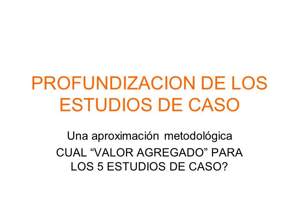 PROFUNDIZACION DE LOS ESTUDIOS DE CASO Una aproximación metodológica CUAL VALOR AGREGADO PARA LOS 5 ESTUDIOS DE CASO?