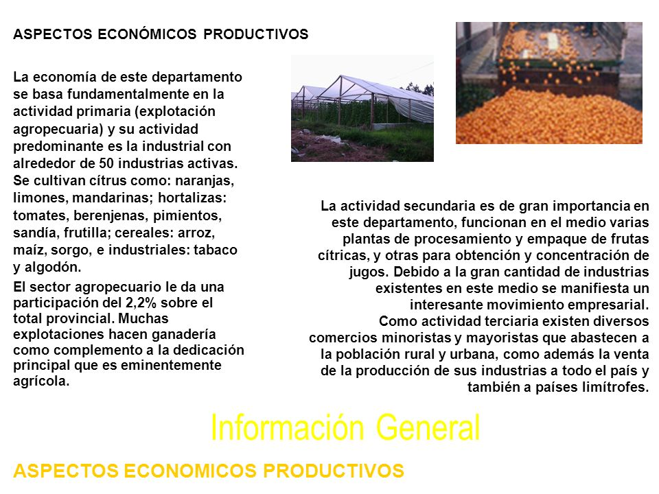 La economía de este departamento se basa fundamentalmente en la actividad primaria (explotación agropecuaria) y su actividad predominante es la industrial con alrededor de 50 industrias activas.