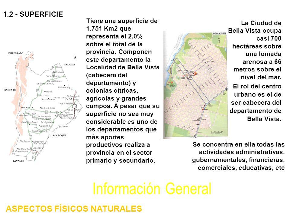 Tiene una superficie de 1.751 Km2 que representa el 2,0% sobre el total de la provincia. Componen este departamento la Localidad de Bella Vista (cabec
