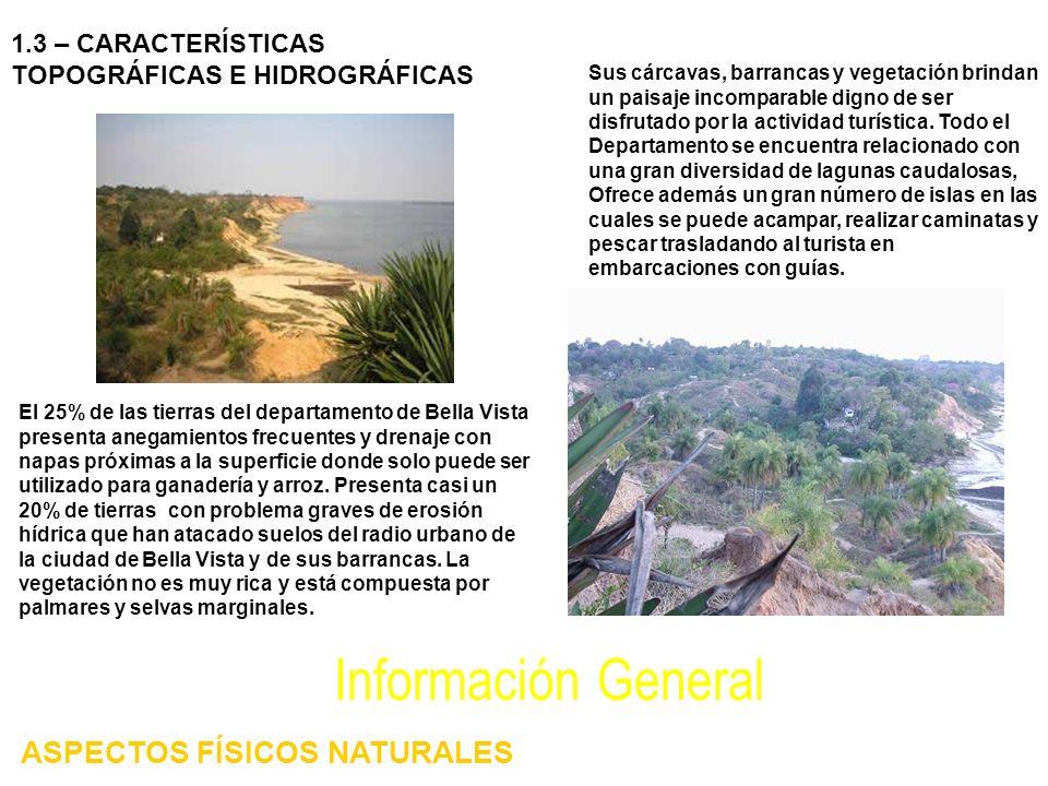 El 25% de las tierras del departamento de Bella Vista presenta anegamientos frecuentes y drenaje con napas próximas a la superficie donde solo puede s