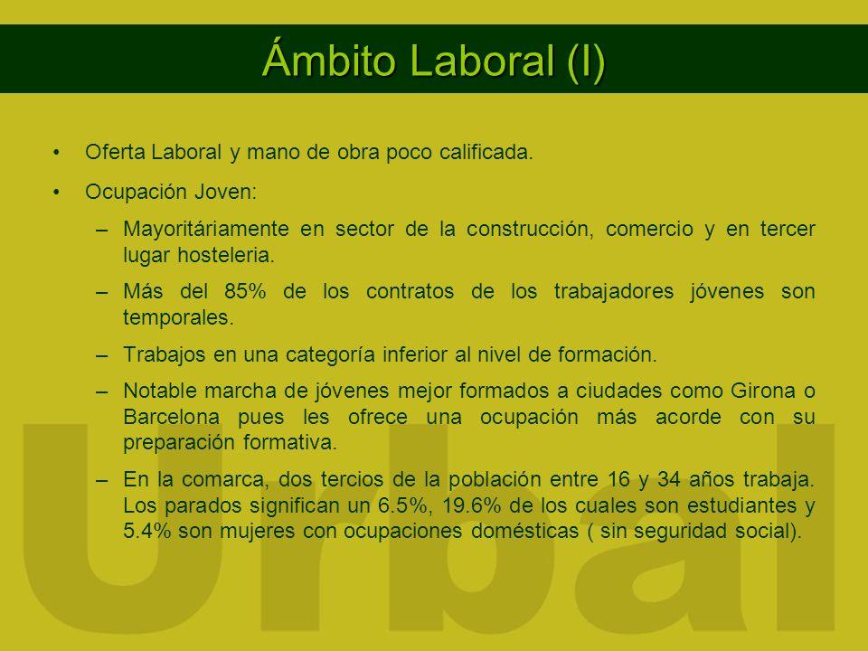 Ámbito Laboral (I) Oferta Laboral y mano de obra poco calificada. Ocupación Joven: –Mayoritáriamente en sector de la construcción, comercio y en terce