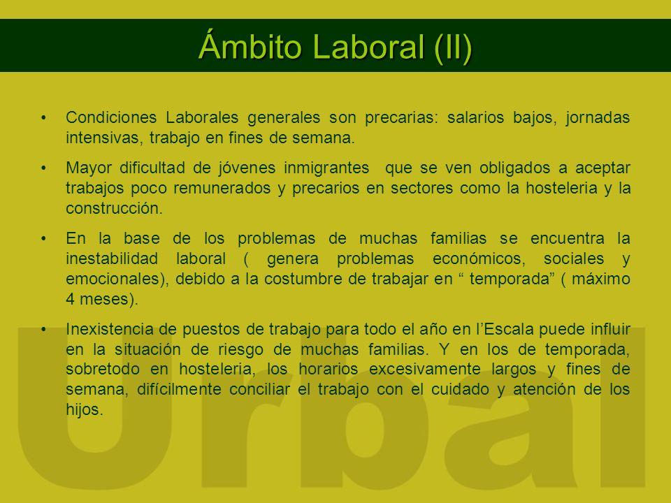 Ámbito Laboral (II) Condiciones Laborales generales son precarias: salarios bajos, jornadas intensivas, trabajo en fines de semana. Mayor dificultad d